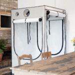 HOMEbox Ambient Q120 x 120 x 200 cm