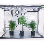 QQ1530-Grow-Tent-inside-1